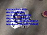 705-52-20010 doppelte hydraulische Zahnradpumpe für Exkavator Pw60-1