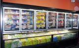 Compressor avançada do resfriador e Congelador Chiller aberto para o supermercado