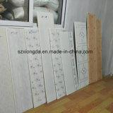 Ligne de expulsion de panneau de plafond de PVC