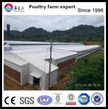 Design profissional Comercial Automática Estrutura de aço pré-fabricadas Casa de frango de aves de capoeira