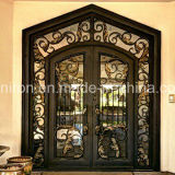 Künste und Fertigkeit-moderner Entwurfs-schöne Eisen-Tür für Haus