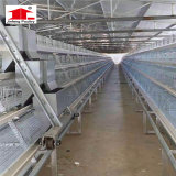 دجاجة بيضة إنتاج يحبس دواجن تجهيز