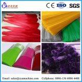 Monofilament de filament Pet//équipements ou les fils de soie de décisions