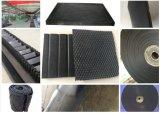 Gummimatte verwendet für den Behälter-Fußboden gebildet in China