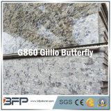 Импортированная желтая плитка пола гранита с популярной пользой для Polished поверхности