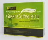 Leptinの元の重量は緑のコーヒー800細くのコーヒーを失う