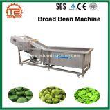 Bean de traitement et de fève Machine à laver