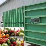야채와 과일을%s 새로운 디자인된 고품질 진공 냉각기