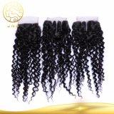 Trama d'oltremare umana brasiliana dei capelli della donna della Cina del Virgin grezzo all'ingrosso poco costoso di Remy