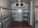 Armazenamento frio de quarto frio de padrão de alimento