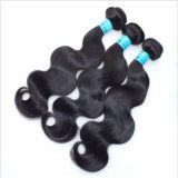 Prolongements malaisiens de trame de cheveux humains de Vierge de la meilleure qualité de Remy