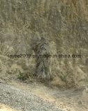 [أولترا] يتناسب منافس من الوزن الخفيف [غيلّي] غابة [غيلّي] شبكة