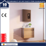 Governo fissato al muro di legno di vanità della stanza da bagno degli articoli sanitari con indicatore luminoso