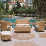 Sofá moderno del jardín del patio del ocio de los muebles al aire libre de la rota (TG-JW51)