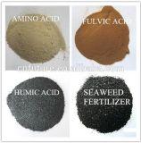 Extracto de algas naturais 100% de algas marrons