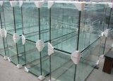 De MiniTank van uitstekende kwaliteit van het Aquarium van de Vissen van het Glas