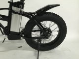 Большинств мощный Bike Elictric с мотором 750