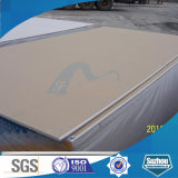 El panel de la mampostería seca (tarjeta de yeso hecha frente papel)
