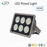 LED 플러드 빛 300W 정원 빛 온난하거나 순수한 또는 차가운 백색