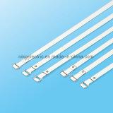 Selbst-Verschluss mit Zunge-Kopf-Edelstahl-Kabelbinder