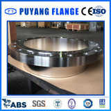Acciaio inossidabile dell'ANSI e flangia forgiata completamente lavorata (PY0051)