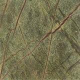 열대 열대 다우림 녹색 대리석 가격, 녹색 대리석