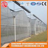 Serra di plastica della Cina con il sistema di raffreddamento