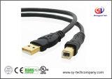 USB 2.0 - un câble mâle à mâle (10 pieds)