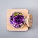 مصنع [هندمد] يحفظ زهرة هبة مع ضوء لأنّ زخرفة