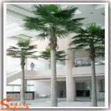 Jardim Plantas Ornamentais Palmeira de Coco artificial de plástico