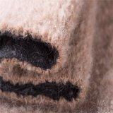 Tessuto Mixed delle lane delle lane e dell'alpaga per il cappotto di inverno