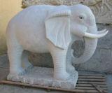 Камень темного серого дельфина гранита G654 животный высекая/животная статуя/животная скульптура