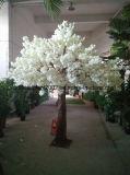 나무가 정원 훈장 인공적인 꽃송이 백색 버찌에 의하여 꽃이 핀다