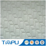 Fil de couleur Jacquard Anti-Static Rayon Upholstery Mattress Ticking Fabric 200-500GSM