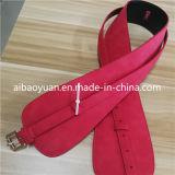Il colore rosso caldo delle signore definisce la cinghia di vita, cinghia di Accesssories di modo