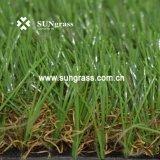 35 mm Hoog - dichtheid het Modelleren het Valse Gras van de Vrije tijd van de Tuin (sunq-AL00079)