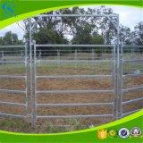 La vendita calda Caldo-Ha tuffato la rete fissa galvanizzata del cavallo della rete fissa del bestiame