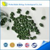 Té verde certificado GMP Softgel exterior del peso de la pérdida de la comida sana