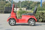 Мини-электрический автомобиль Вместо Touring Car (SP-EV-10)