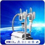 Используемая Salon/SPA машина RF кавитации Cryo при медицинский одобренный Ce