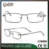 Neue Entwurfs-Form-Metallanzeige Eyewear Gläser mit Fall