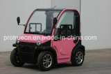 Air Condition (SP-EV-09)를 가진 전기 Mini Car