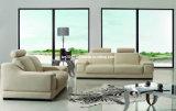 Самомоднейшая живущий софа кожи комнаты (SBO5910)