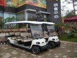 CE genehmigen 11 Passagiere Elektroauto (Lt-A8 + 3)