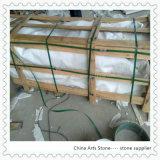 El granito y caliza blanca de Cuarzo/Mármol Crema Moca baldosa de pared