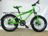 2018 Dirty Hot Bicycle/Children Bicycle/Kids Bike 20 Inches with Disc Brake Sr-Kb139