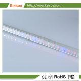 Keisue 높은 Effiency LED는 플랜트 공장을%s 가득 차있는 스펙트럼에 가볍게 증가한다