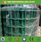 PVC 입히는 네덜란드 철망사 담 판매를 위한 유럽 담 안전 담