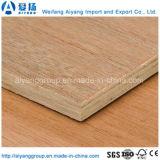 AA Grade Bintangor cara de álamo núcleo de madera contrachapada comercial para la decoración