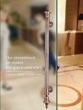 Het Handvat DM-DHL 057 van de Deur van het Glas van het Roestvrij staal van het Type van Dimon H